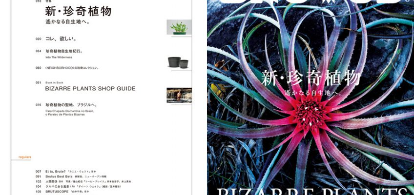 BRUTUS(ブルータス) 2018年7/1号 [新・珍奇植物] 特集に弊社伊藤彰洋の記事が掲載されました