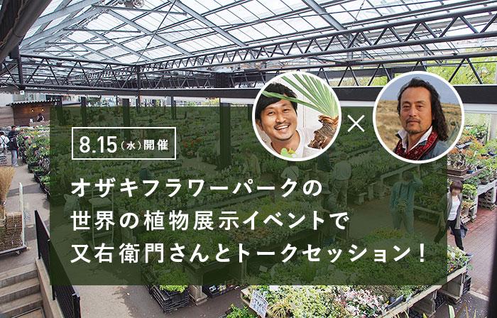 弊社代表の石塚がオザキフラワーパークの世界の植物の展示イベントでトークセッションします[又右衛門×石塚秀彦]