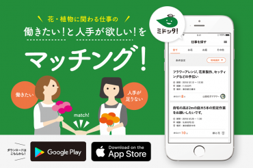 日本初!花・植物に関わる仕事のマッチングアプリ「ミドッタ!」をリリース