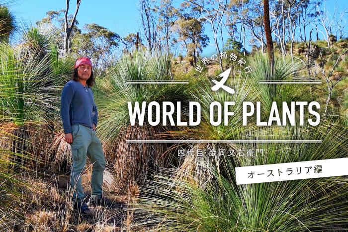【新連載】植物貿易の第一人者、金岡又右衛門さんのコラム「世界の植物紀行 – WORLD OF PLANTS –  四代目金岡又右衛門」がLOVEGREENで連載開始